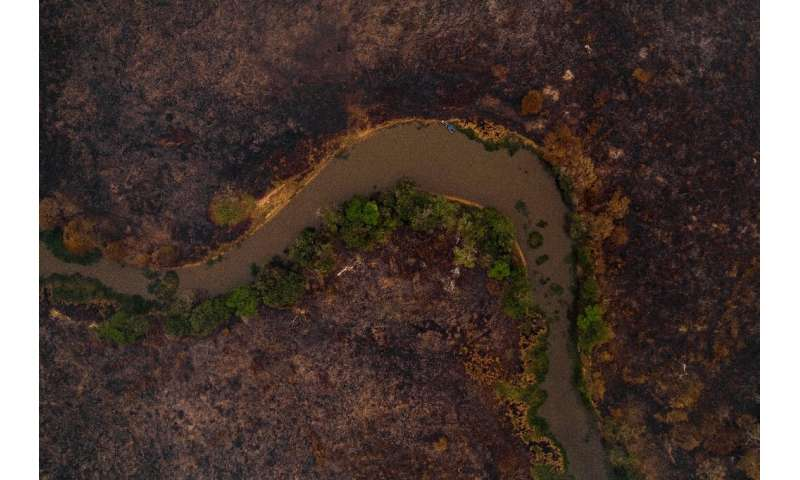 An aerial view showing a burnt area of the Pantanal, the world's largest tropical wetland, in Mato Grosso State, Brazil