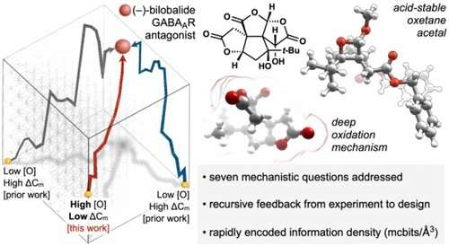 Chemists develop framework to enable efficient synthesis of 'information-dense' molecules