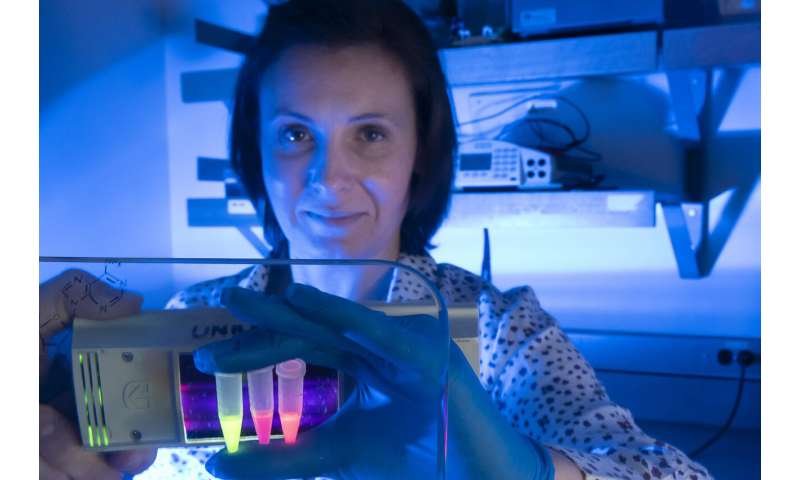 Coronavirus testing kits to be developed using SFU-invented RNA imaging technology