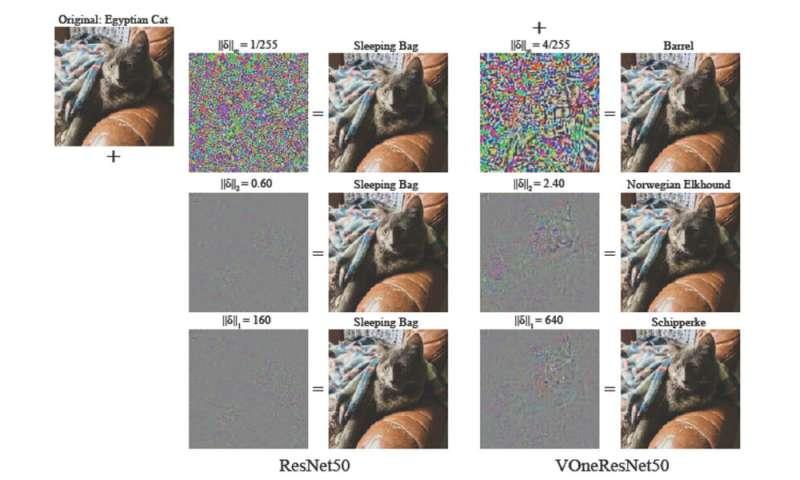 Ahli saraf menemukan cara untuk membuat model pengenalan objek bekerja lebih baik