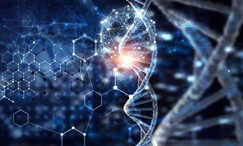 New insights into epigenetic modifications