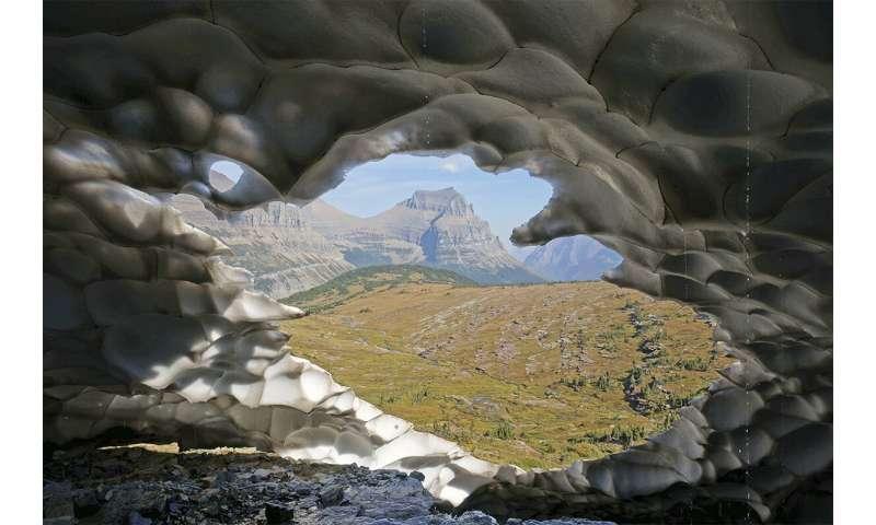 New study shows persistence of meltwater biodiversity despite glacier loss