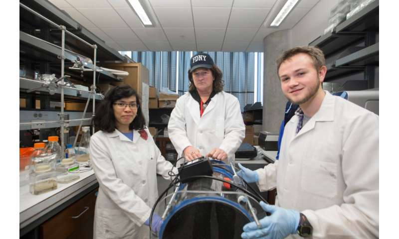 Research team tackles superbug infections with novel therapy