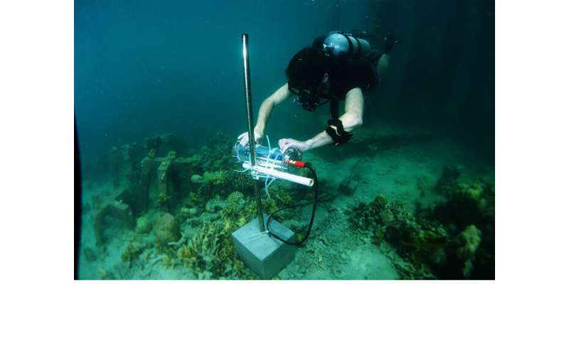 Using Artificial Intelligence to Save Coral Reefs