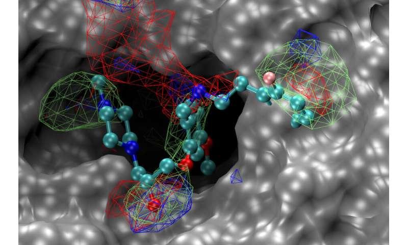 محققان ترکیبات جدید امیدوار کننده ای را برای درمان بالقوه ویروس های کرونا شناسایی می کنند