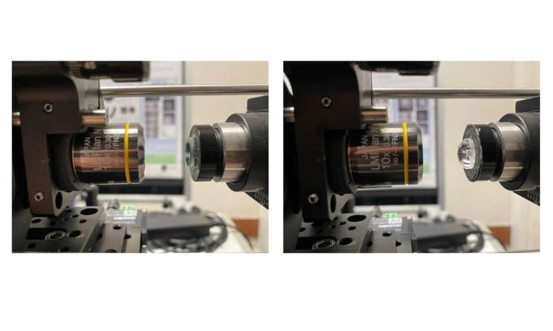 Researchers capture cell-level details of curved cornea