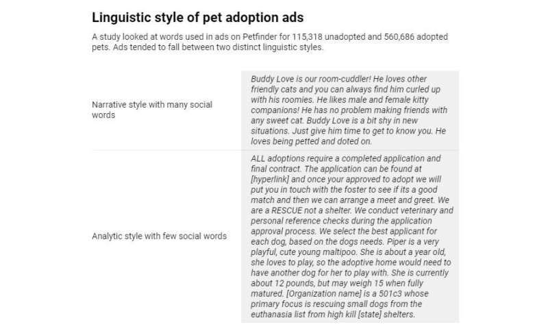 How to write better pet adoption ads