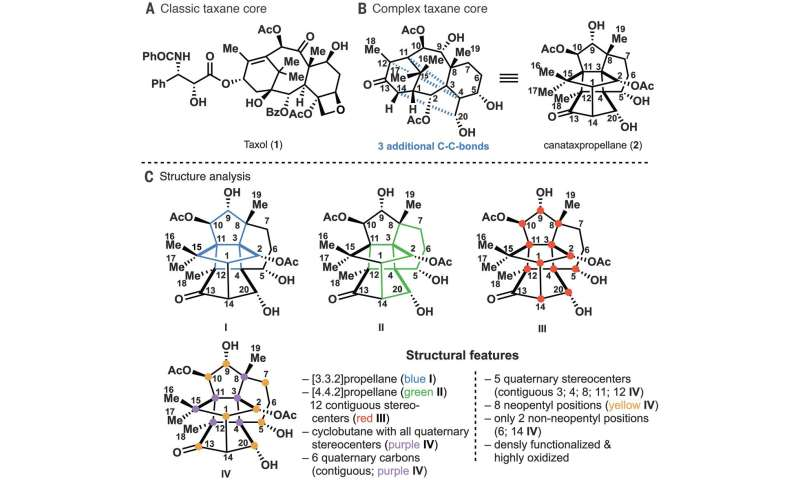 Chemists synthesize canataxpropellane - one of the most complex natural products ever produced