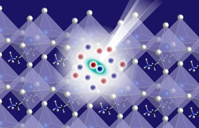 New quasiparticle unveiled in room temperature semiconductors
