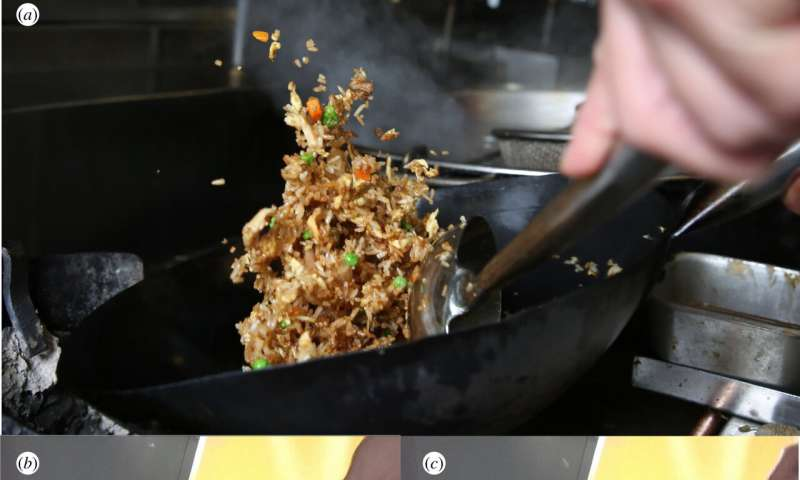 Unraveling the physics behind tossing fried rice