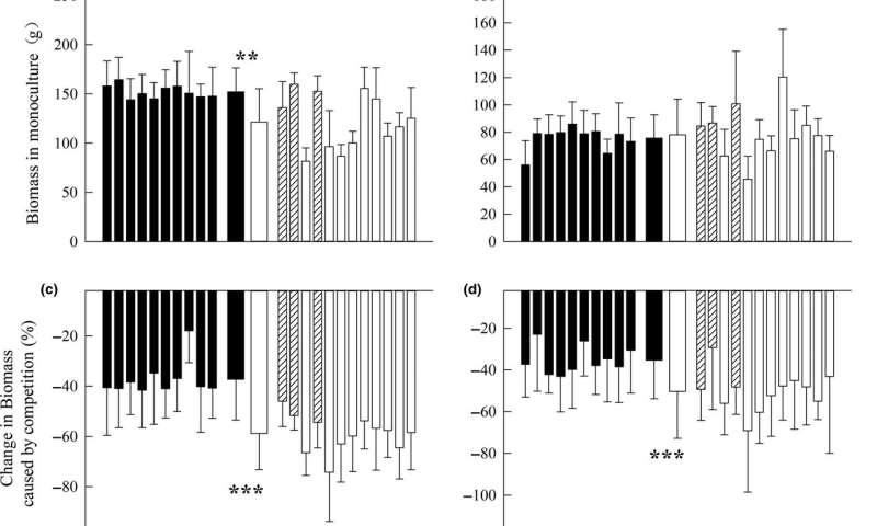 Chromolaena odorata increases resource investment into growth through postintroduction evolution