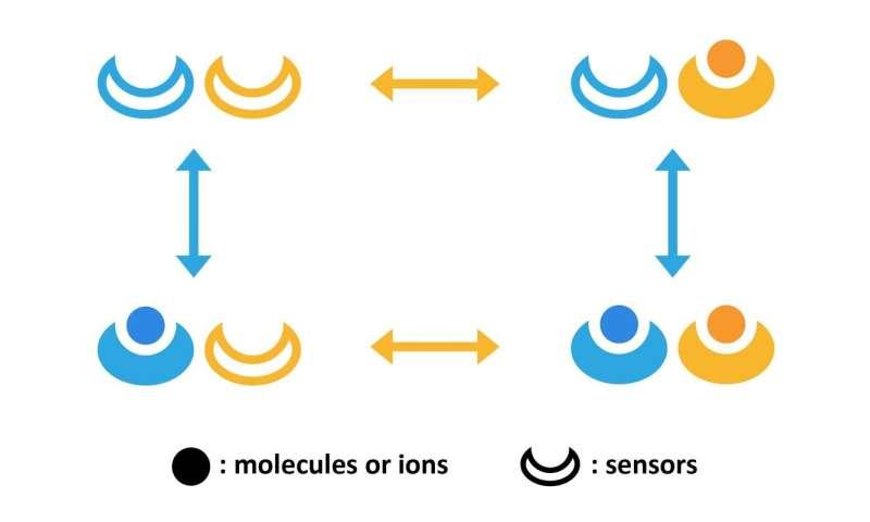 Making sense of cells