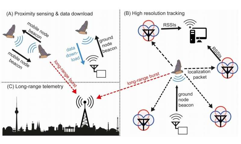 A next-generation sensor network for tracking small animals