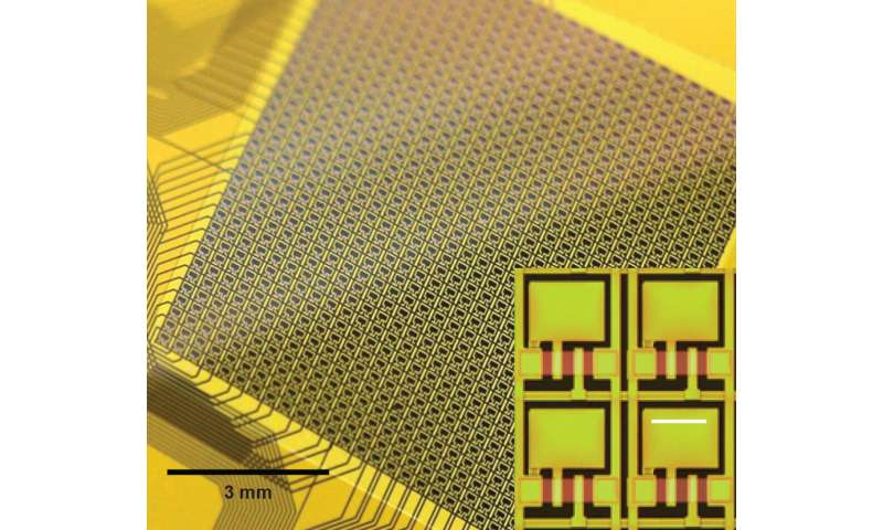 Protecting thin, flexible brain interfaces from the human body