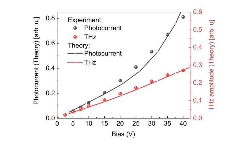 Terahertz science discloses the ultrafast photocarrier dynamics in carbon nanotubes