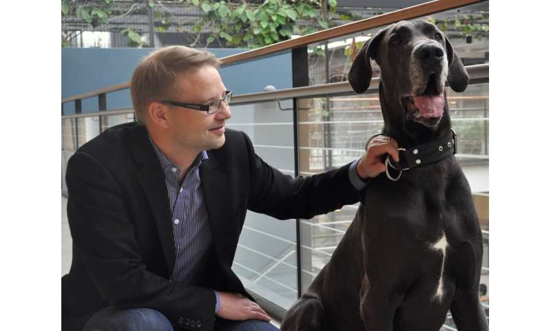 Fearful Great Danes provide new insights to genetic causes of fear
