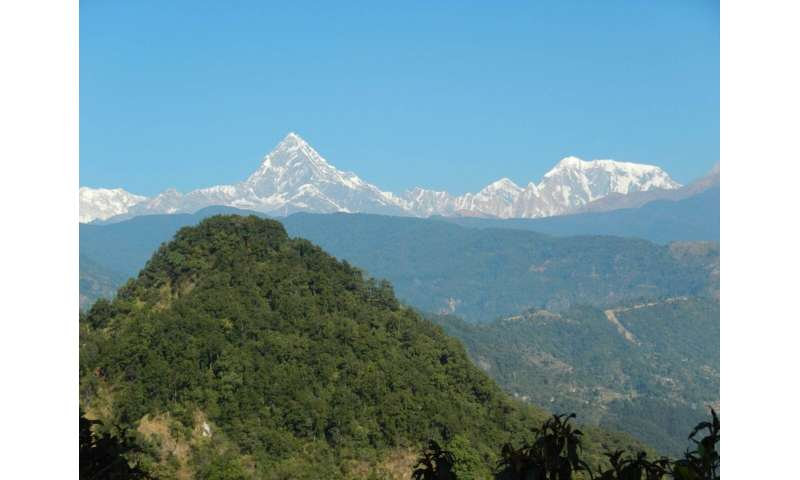 Low impact of Quaternary glaciations on the erosion of the Himalayas