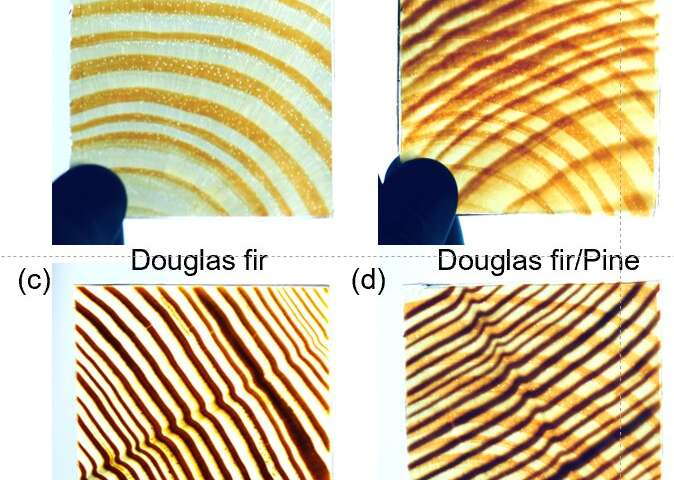 Glass-like wood insulates heat, is tough, blocks UV and has wood-grain pattern