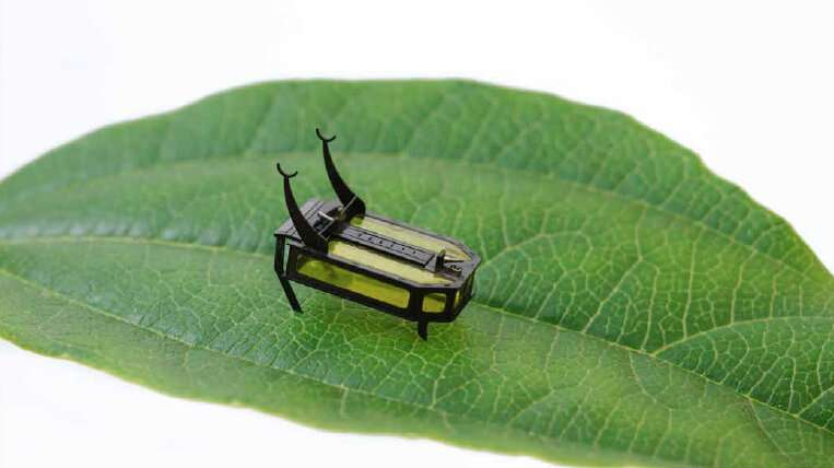 Beyond batteries: Scientists build methanol-powered beetle bot