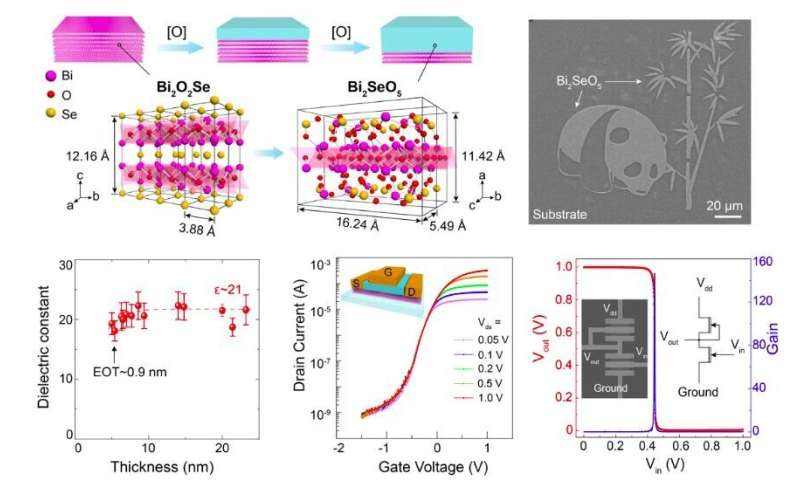 Bi2SeO5: A new native oxide high-k gate dielectric for fabricating 2-D electronics