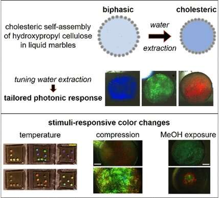 Self-assembly of responsive photonic biobased materials in liquid marbles