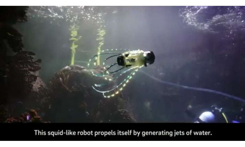 This 'squidbot' jets around and takes pics of coral and fish