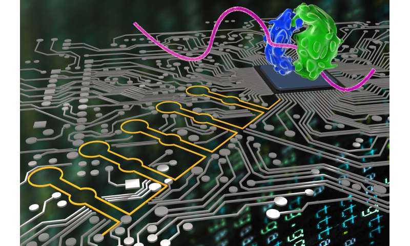 Deep learning takes on synthetic biology
