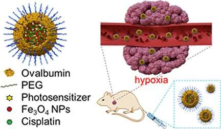 Synergistic anticancer therapy with two cell killer agent systems in one nanocapsule