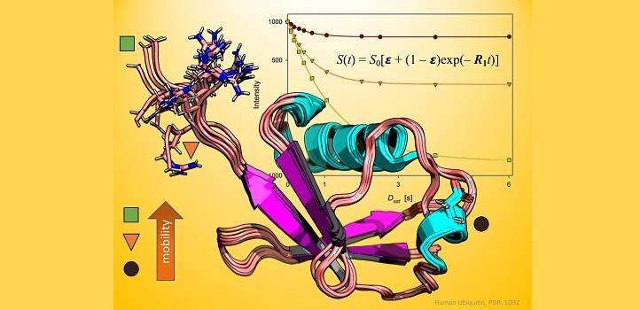 Old methods prove true for studying proteins
