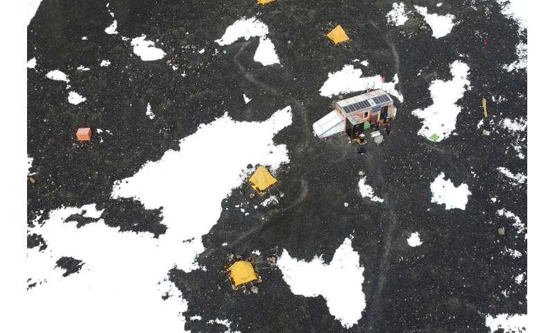 Sistem multi-drone mensurvei koloni penguin secara mandiri