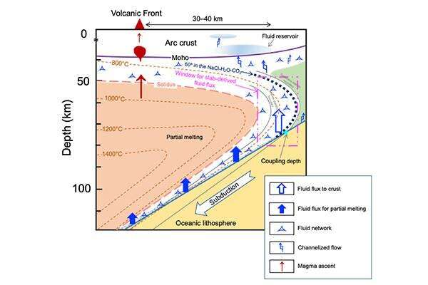 The connectivity of multicomponent fluids in subduction zones
