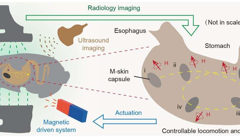Semprotan magnet: Memberikan bionergi baru pada benda mati