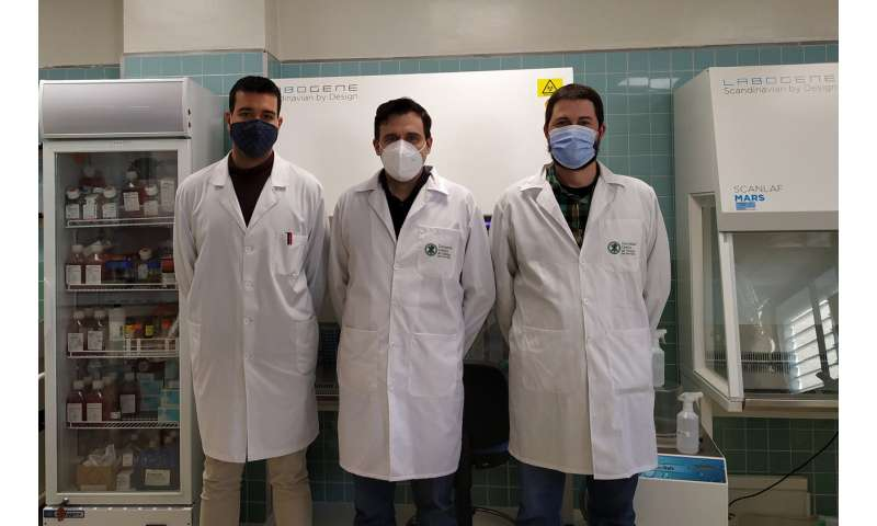 Researchers create a filter for masks that can deactivate SARS-CoV-2 and multi-resistant bacteria