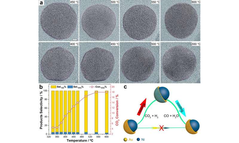 Scientists reveal hidden catalytic surface of Ni-Au core-shell in CO2 hydrogenation