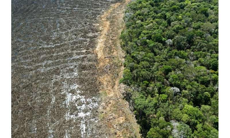 Una vista aérea de un área deforestada cerca de Sinop, en el estado brasileño de Mato Grosso en agosto de 2020
