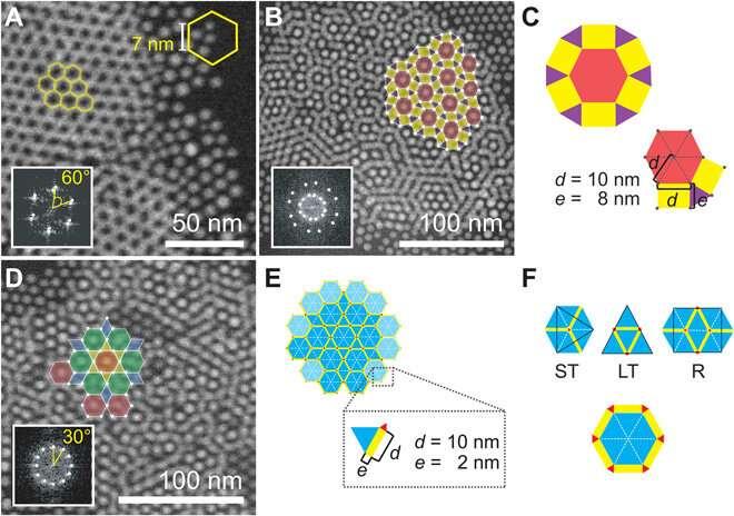 Electron microscopy of nanoparticle superlattice formation at a solid-liquid interface in non-polar liquids