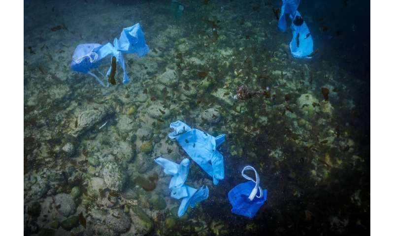 Researchers found the kind of surgical gloves and disposable masks used to ward of COVID-19 along the banks and beaches of river
