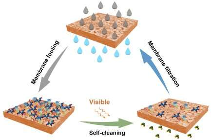 Scientists develop N-doped self-cleaning membranes that use visible light irradiation