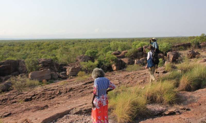 65,000-year-old plant remains show the earliest Australians spent plenty of time cooking