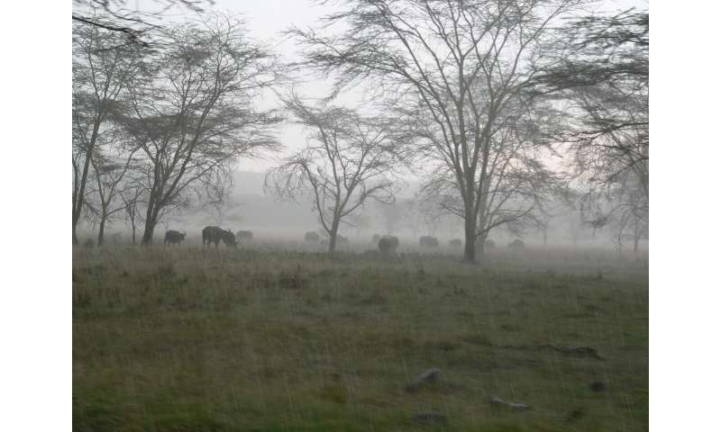 Climate change projected to increase seasonal East African rainfall