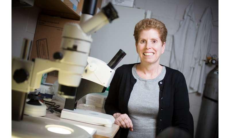 Environmental contaminants alter gut microbiome, health