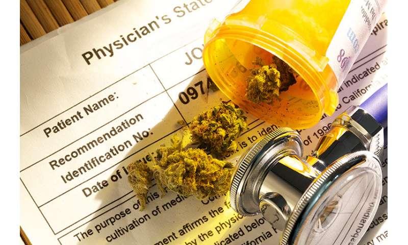 New study examines pain tolerance among cannabis users