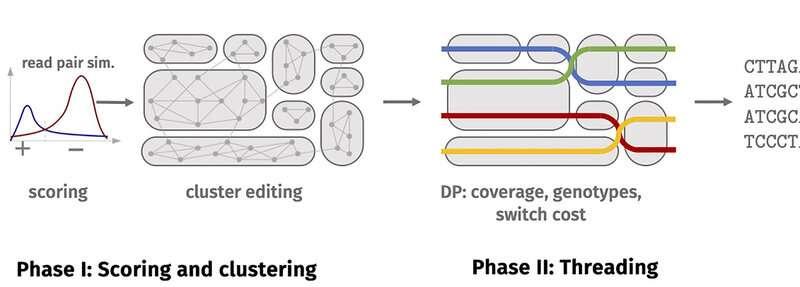 Desvelando los secretos de los genomas vegetales en alta resolución