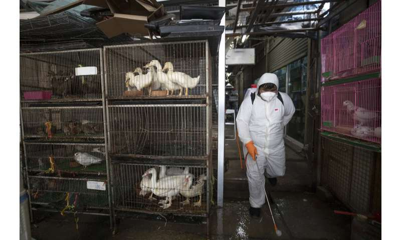 Virus pandemic's reach worsens; 10,000 dead worldwide