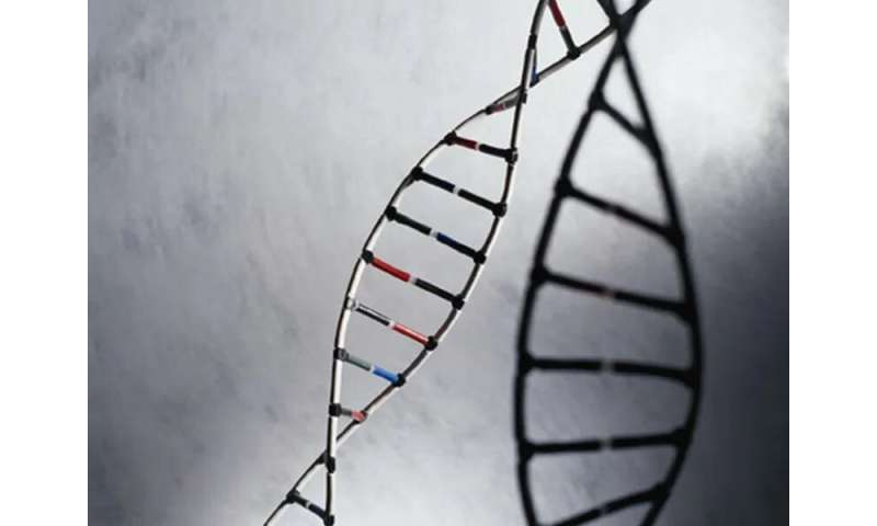 Guidance issued for genetic testing in prostate cancer