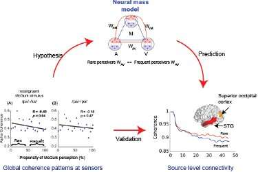 Investigating neural mechanisms underlying individual differences in perception