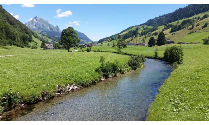 Predicting the biodiversity of rivers