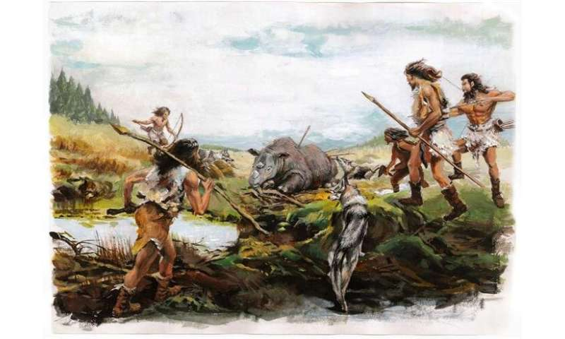 Researchers find bovid and rhinocerous species in Tibetan Plateau ~5,200 years ago
