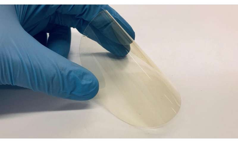 A bioplastic that protects against UV radiation