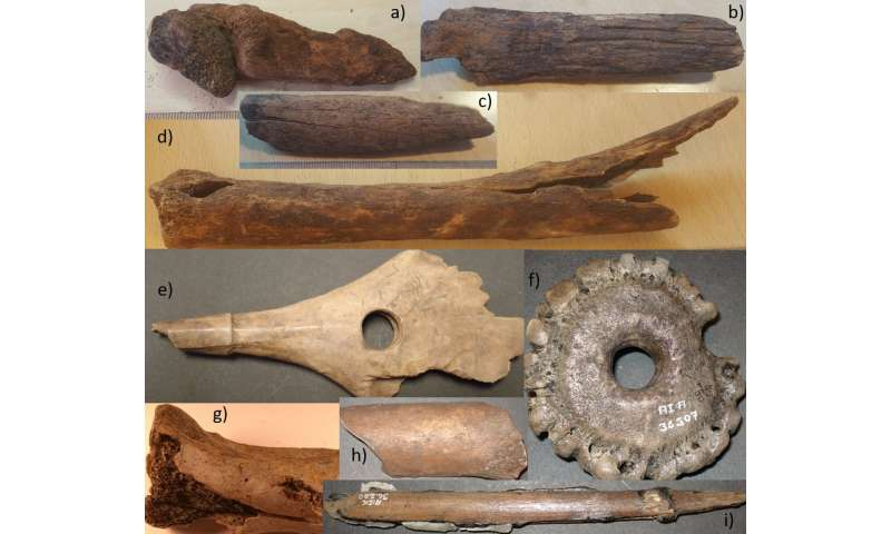 Accelerated bone deterioration in last 70 years at famous Mesolithic peat bog in peril